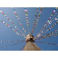 Genuine Medium Tibetan Prayer Flags ( Lung Ta) - Fair Trade - Handmade by the Tibetan Buddhist community in Nepal